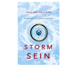 Stormsein